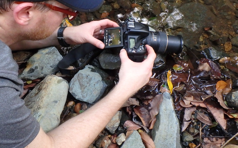 Conservation Photography Field Course @ Cocobolo Nature Reserve
